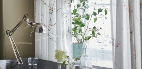 Исследование: как жители Эстонии изменили свой дом в период ограничений