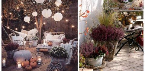 ФОТО | 15 идей, как сделать террасу по-осеннему привлекательной и уютной
