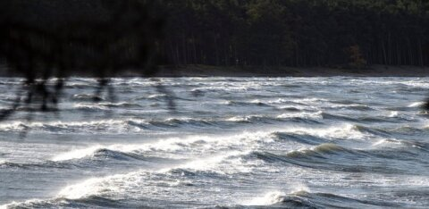 Полиция ищет в Таллиннском заливе упавшего в море человека