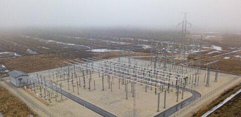 Haruldane toonekurg ohustab Eesti Energia Tootsi hiigelprojekti