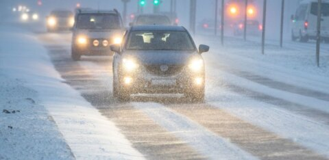 На Эстонию обрушился снежный шторм: видимость ограничена, возможны проблемы с электричеством и водой