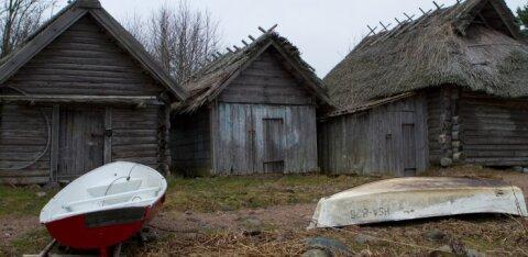 """Не пора ли уж готовиться к """"нормальной эстонской осени"""" — с ее сыростью, вечным сплином и месивом из листьев под ногами?"""