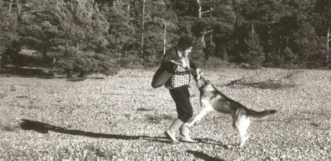 Margus Mikomägi: kaalukauss on metsavahtide aja kasuks. Usalduse pärast