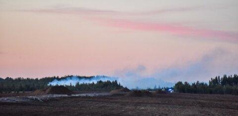 ФОТО: В деревне в Пярнумаа горит болото