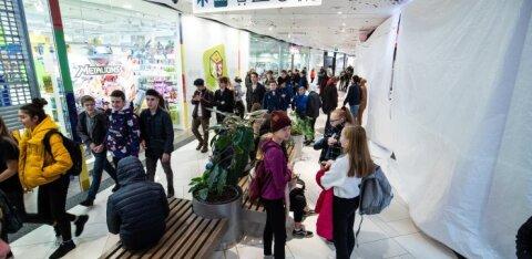 В Эстонии доля работающих молодых людей за год сократилась на 5%