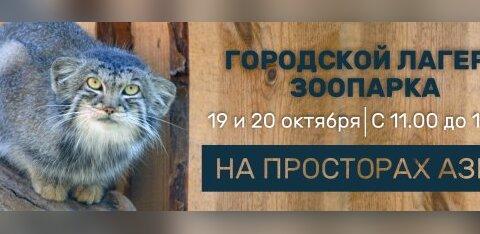 """В октябре в Таллиннском зоопарке пройдет детский городской лагерь """"На просторах Азии"""""""