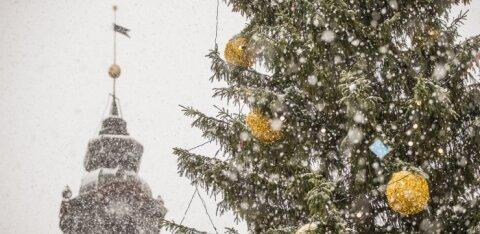 Sünoptik Kairo Kiitsak jõuluilmast: lund on siiski oodata, kuid mitte ülemäära palju