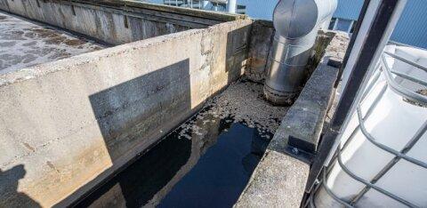 Ученые будут мониторить сточные воды Эстонии для раннего выявления возможной вспышки коронавируса