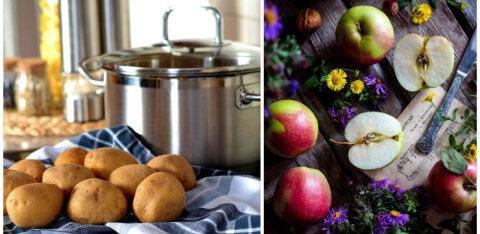 Полезные и ядовитые: продукты, которые могут быть опасны в жару