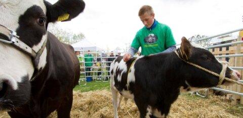 Maaeluminister kutsub kooli: Eesti põllu- ja maamajanduserialade õpe on kõrgetasemeline
