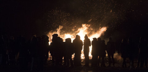 Пыхья-Таллинн встретит год Крысы костром из елок и огненным шоу. Приглашаются все!