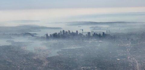 ФОТО и ВИДЕО | Апокалиптические кадры: Сидней окутан дымом от лесных пожаров