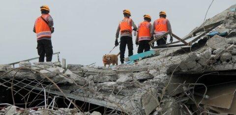 Число жертв последствий землетрясений в Индонезии выросло до 56