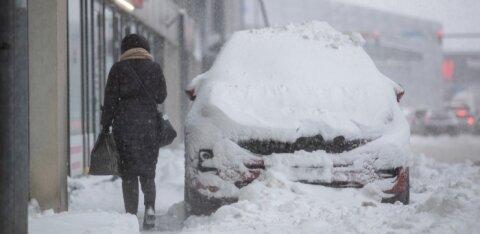Тенденция последних 60 лет: снежные зимы становятся все короче