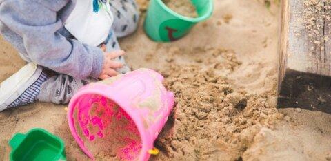 Lihtsad nipid, kuidas ise lastesõbralik aed kujundada