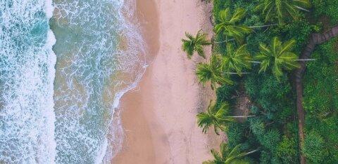 Шри-Ланка открывается для туристов. Но с обязательным 2-недельным карантином по прибытии