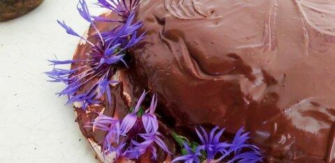 TERVISLIKUD RETSEPTID | Põnevaid maitseid peedist: šokolaadikook, peedismuuti ja -hummus