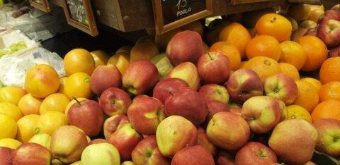 Eestlaste toidulaud on lookas võõramaistest õuntest