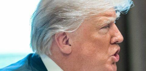 Американский профессор: президент Трамп — поразительный человек
