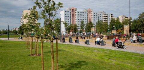 В каких районах Таллинна выгоднее всего сдавать квартиру?