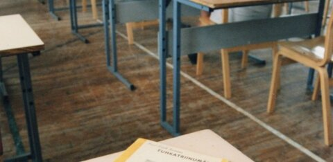 ТАБЛИЦЫ и ГРАФИКИ | Результаты госэкзаменов: смотрите, насколько хорошо их сдали в школах вашего района