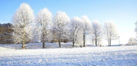 Погода на этой неделе обещает быть очень даже рождественской