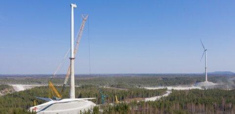 Aivar Kokk: kas riik reageeris Aidu tuulepargi saagas üle?
