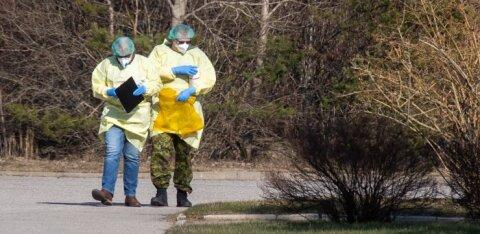 Дом Стенбока: наступают решающие недели в борьбе со сдерживанием распространения коронавируса. Оставайтесь дома!
