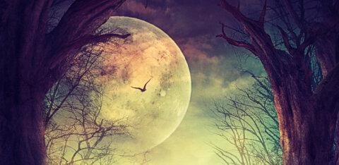 Tänane täiskuu toob kaasa soovi oma mõtteid ja tundeid südamelt ära rääkida