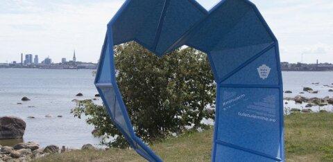 ФОТО: На пляже Пикакари появилась новая достопримечательность — синее сердце