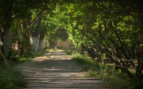 Последние романтики Кабула: тишина и счастье посреди афганских садов