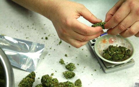 План рецепт конопля холодильник с марихуаной