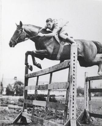 Hobune Poolus